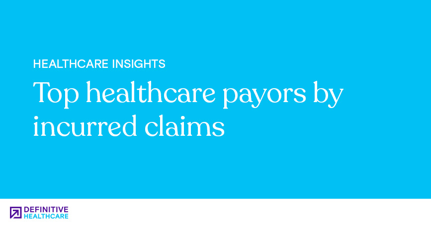 Top Healthcare Payors by Incurred Claims